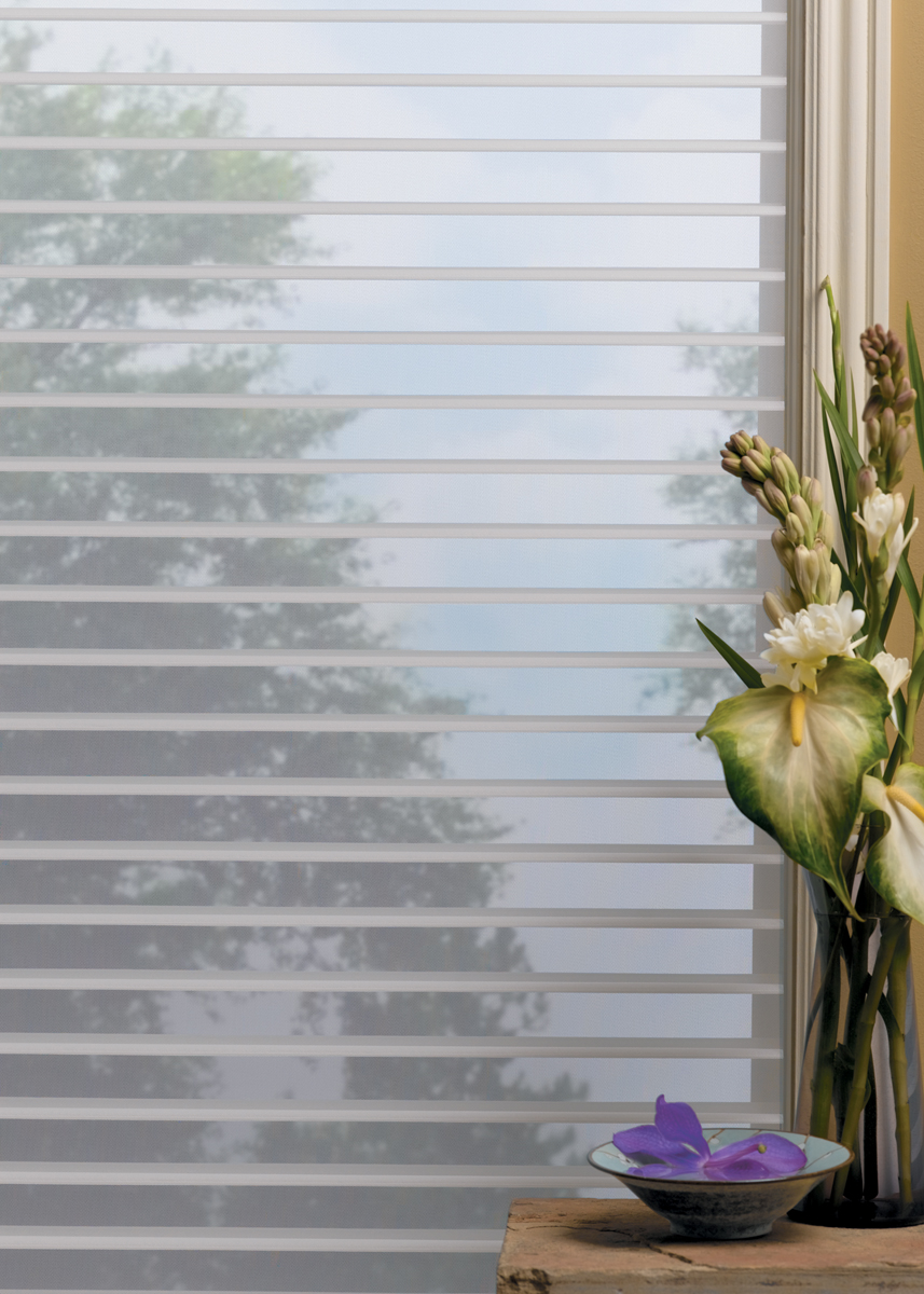 Uv shades hunter douglas shadings denver co for Hunter douglas exterior sun shades
