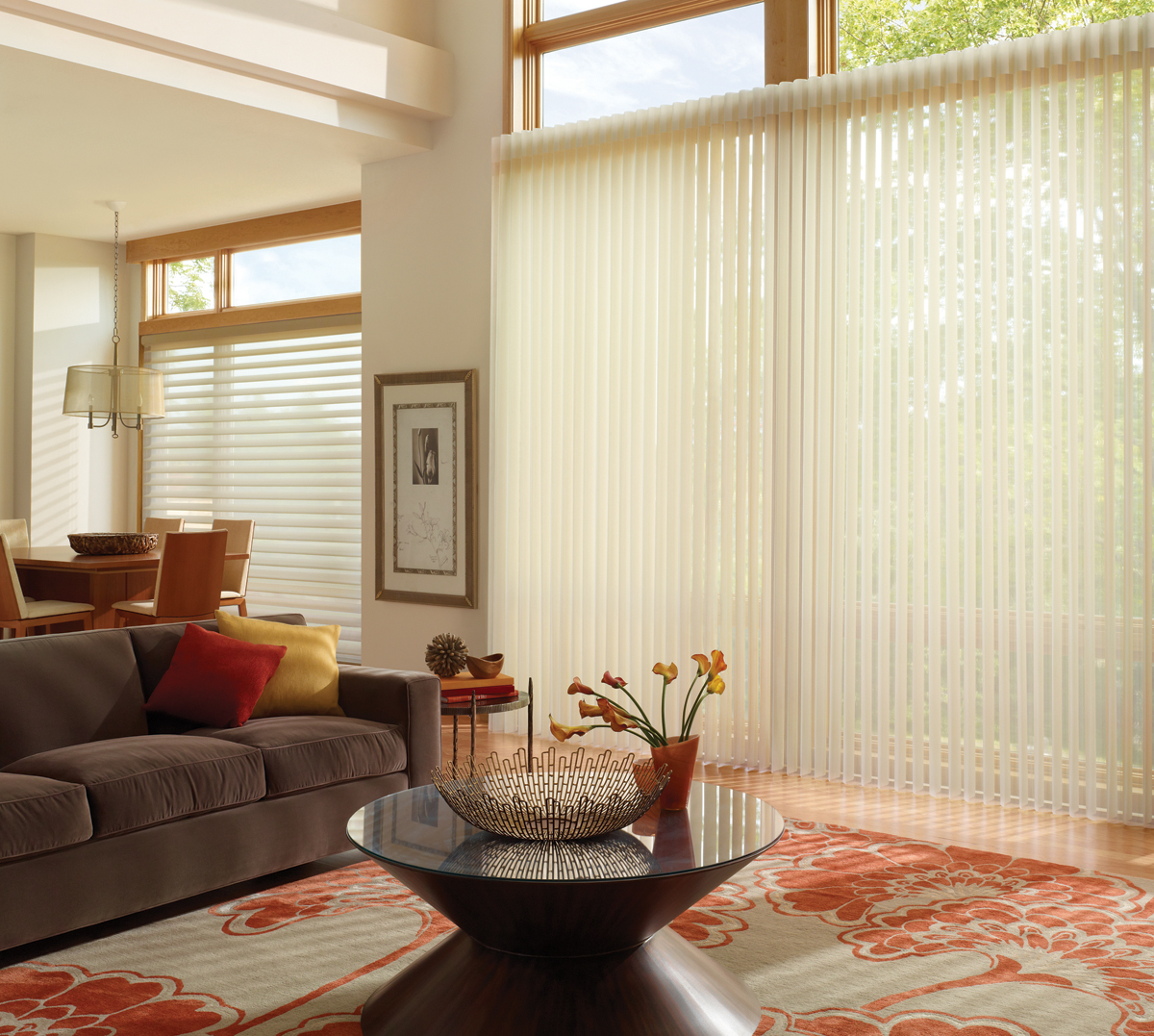 Privacy blinds for windows - Luminette Privacy Sheers And Modern Draperies