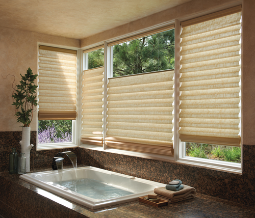 Vignette Modern Roman Shades In The Bathroom